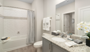 lady lake multifamily general contractor